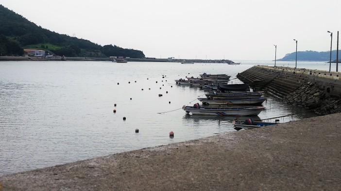 Jindo Boats