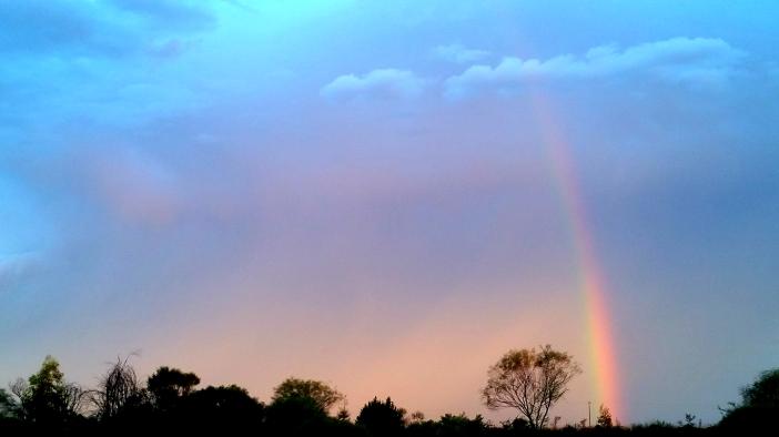 Koora Rainbow 1